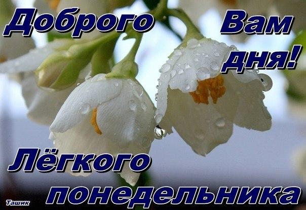 Красноперекопск Online — Общественный ...: www.krasnoperekopsk.net/2012/07/ponedelnik-den-tyazhyolyj
