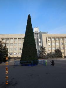 елка Красноперкопск